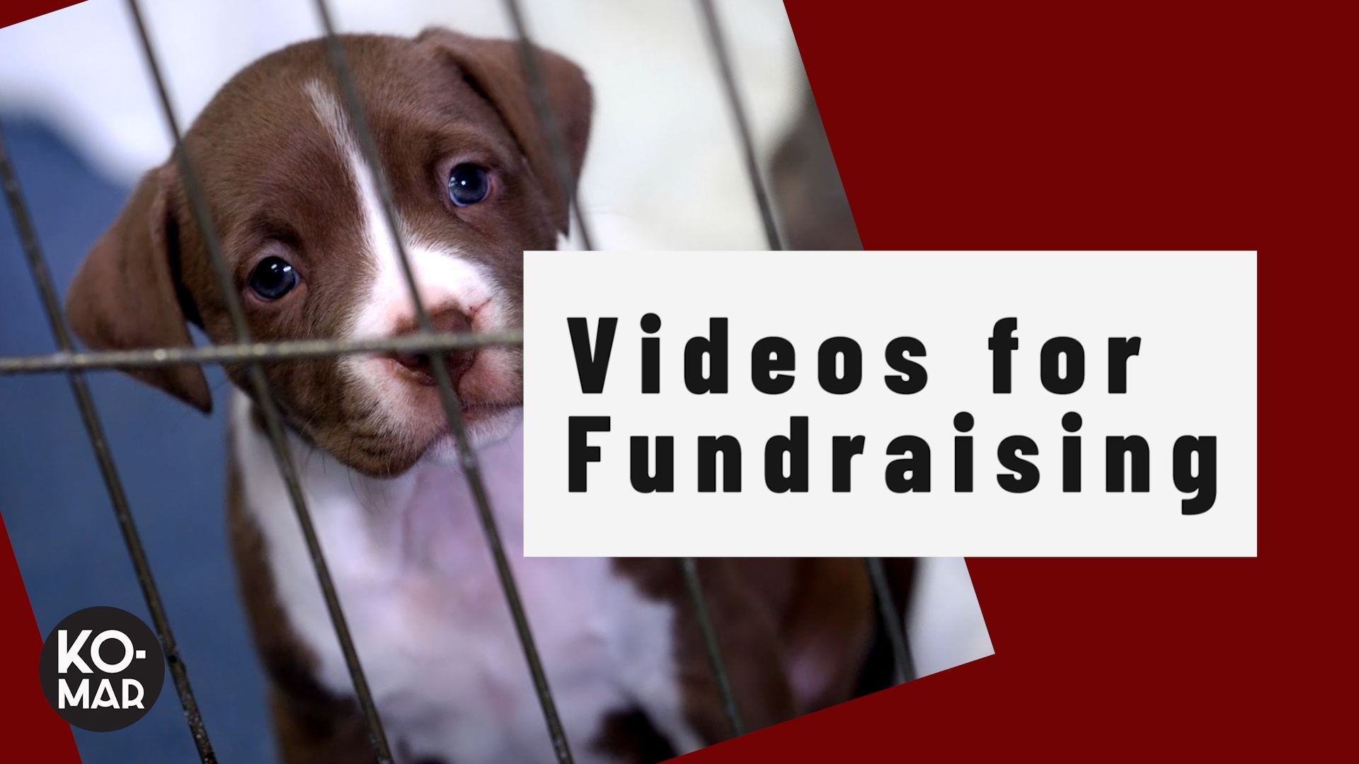 How To Raise More Money With a Powerful Fundraising Video
